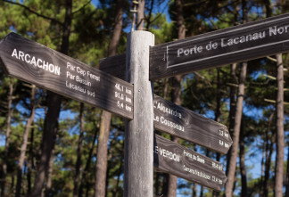 Piste cyclable de Lacanau