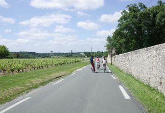 À vélo dans le vignoble